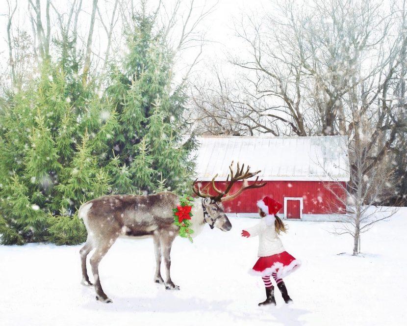 christmas-scene-1846486_1920-2